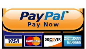 Afbeeldingsresultaat voor pay with paypal